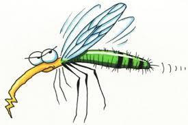 E SONO FIORI! Si sveglia ogni mattino una zanzara come fiore maligno pur se vita ogni vita pur maligna per altri fosse intanto nel pensiero inutile o perverso a sostegno […]
